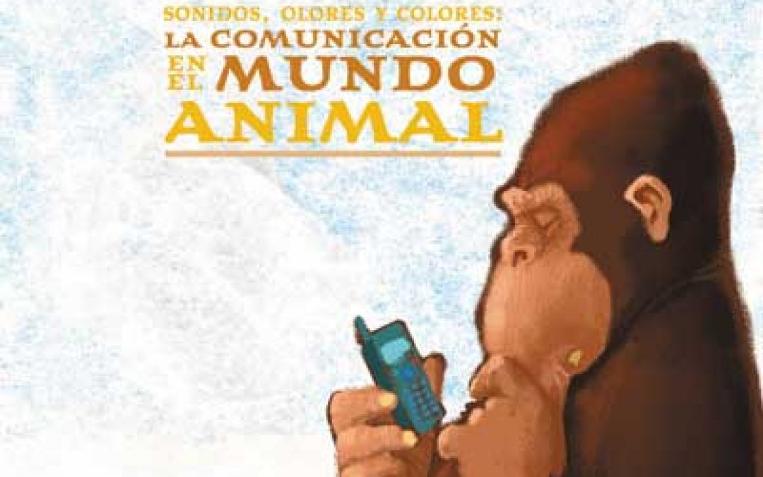 Sonidos, olores y colores: la comunicación en el mundo animal